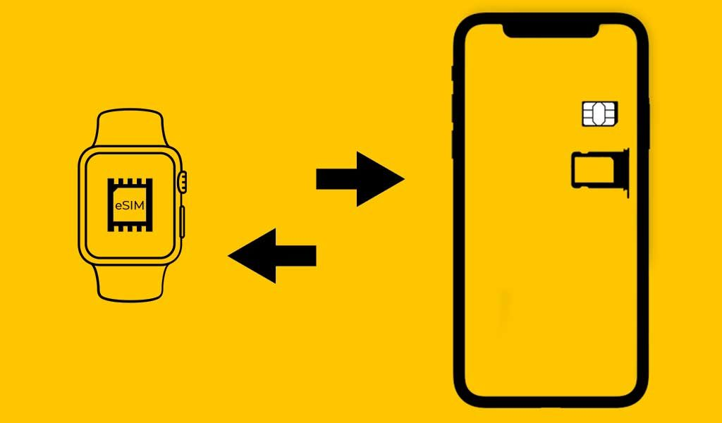 iPhone to Apple Watch Data Transmission